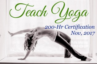 200-hr Cross-Disciplinary Yoga Teacher Training in London