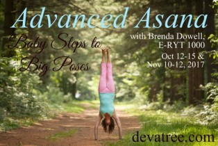 50-hr Beyond the Basics: Advanced Asana