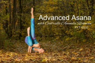 *50-hr Beyond the Basics: Advanced Asana