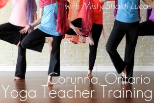 2019 200-hr Cross-Disciplinary Yoga Teacher Training in Corunna