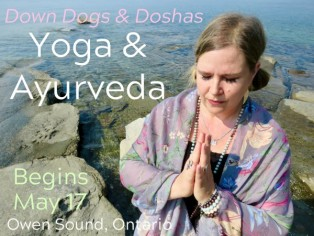 100-hour Down Dogs and Doshas: An Integrated Approach to Ayurveda & Yoga