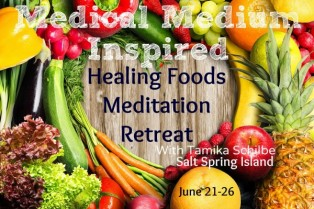 Healing Foods Meditation Retreat