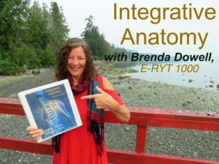 100-hr Integrative Anatomy: Muscles, Bones, Energy & More