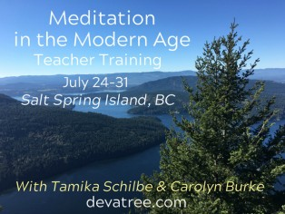2019 50hr Teaching Meditation in the Modern Age
