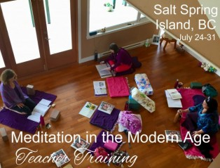 2019 50hr Teaching Meditation in the Modern Age
