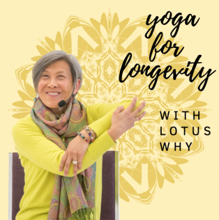 50-Hr Yoga for Longevity