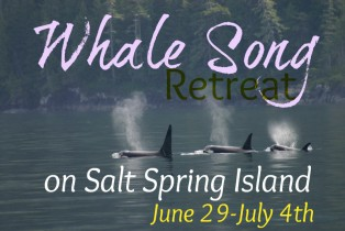 Whale Song: Meditation & Eco-Tour Retreat