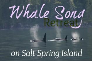 Whale Song: Meditation & Eco-Tour Retreat
