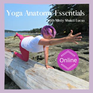 ONLINE *50-hr Yoga Anatomy Essentials