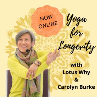 50-Hr Yoga for Longevity